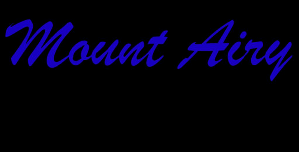 Mount Airy Self Storage logo